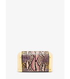 Leyla Small Hand-Painted Python Clutch