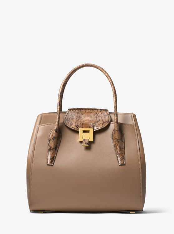 Bancroft Large Calf Leather and Snakeskin Satchel